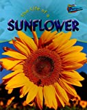 The Life of a Sunflower, Clare Hibbert, 1410909271