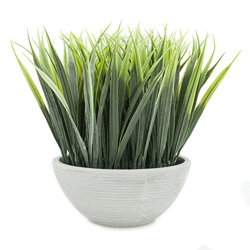 Velener Extra-Long Artificial Grass in White Pot for Home Decor (White Artificial Pot)