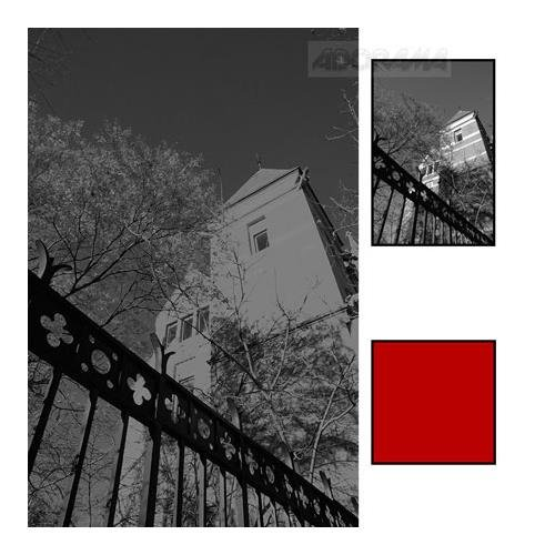 - Hoya 52mm Red 25A Filter