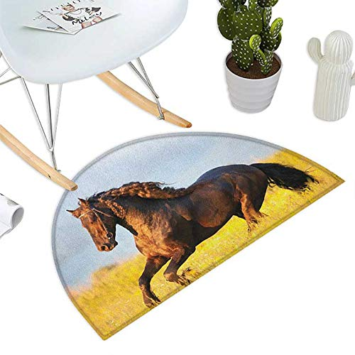 Horses Semicircle Doormat Friesian Horse with Mane Gallops in Meadow Equestrian Mystery Vitality Horse Halfmoon doormats H 47.2'' xD 70.8'' Yellow Brown Blue