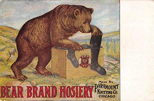 Chicago Illinois Paramount Knitting Co Bear Brand Hosiery Ad Postcard J927893