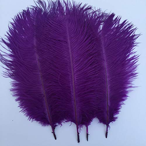 Shekyeon Purple 10-12inch 25-30cm Ostrich Feather Home Decoration DIY Craft Pack of 10