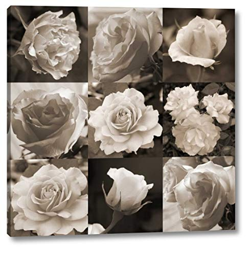 Rose Collection by Marlana Semenza - 24