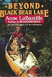 img - for Beyond Black Bear Lake book / textbook / text book