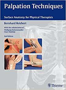 Palpation Techniques: Surface Anatomy for Physical ...