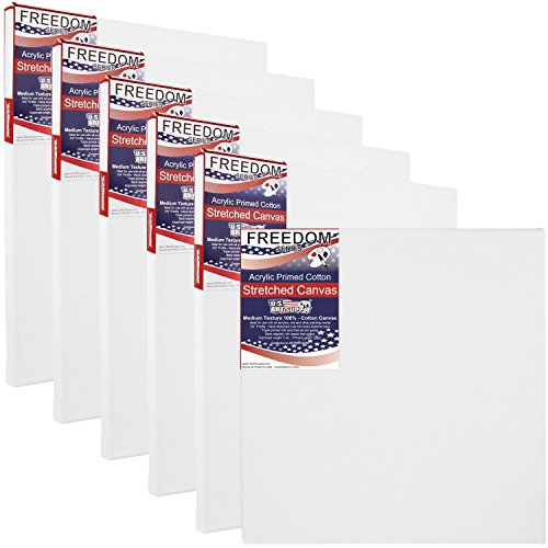 6 Inch Professional Quality Acid-Free Stretched Canvas 6-Pack - 3/4 Profile 12 Ounce Primed Gesso - (1 Full Case of 6 Single Canvases) (16 In Stretched Canvas)