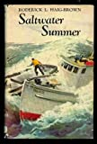 img - for Saltwater summer (Morrow junior books) book / textbook / text book