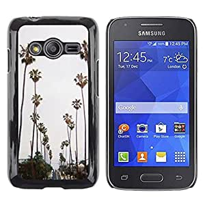LECELL--Funda protectora / Cubierta / Piel For Samsung Galaxy Ace 4 G313 SM-G313F -- Trees Road Beach Miami --