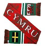 Cymru Wales Soccer Knit Scarf
