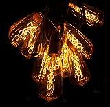 Hometown Evolution, Inc. Edison String Lights (50 Foot Black Wire, ST40 Zig Zag Edison)