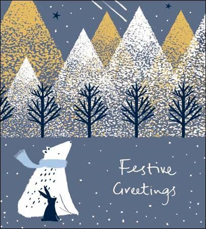 Pack of 5 Festive Greetings Marie Curie Charity Christmas Cards Xmas Card Packs: Amazon.es: Oficina y papelería
