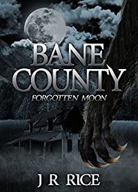 Bane County by J R RICE ebook deal