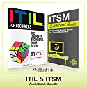 ITIL & ITSM - QuickStart Guides: The Simplified Beginner's Guides to ITIL & IT Service Management Audiobook by ClydeBank Technology Narrated by Peter Bierma, Amy Barron Smolinski