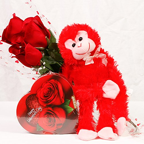 Valentines Day Student / Military Care Package - Roses - Chocolate - Monkey