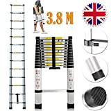 Extension Foldable Telescopic Ladders - High Quality Aluminum Straight Style Climb Telescopic Ladder Extendable Steps (3.8M)