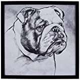 Modern Black and White Print of English Bulldog, Black Frame, 22'' x 22''