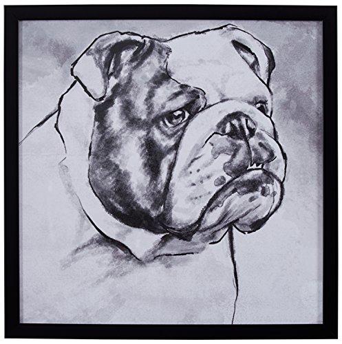 Modern Black and White Print of English Bulldog, Black Frame, 22'' x 22'' by Stone & Beam