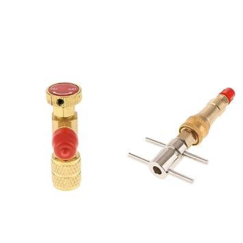 non-brand Sharplace Válvula de Alivio de Presión Seguridad Carga con Enchufe de Conexión Rápida de Lavadora: Amazon.es: Jardín