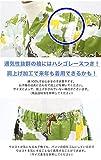 KOMESICHI Boy's Japanese Jinbei Kimono Animals and
