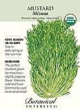Mustard Greens Mizuna Certified Organic Heirloom Seeds 175 Seeds