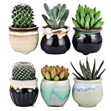 Flowing Glaze Ceramic Succulent Plant Pot 6pcs 2.5 Inch Cactus Flower Plant Pot Container Planter Black&White Base Serial Set