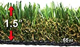 StarPro SPG-60 $2.35/sf ''Great'' Centipede SW Natural Artificial Synthetic Grass Lawn Turf, 9ftx15ft