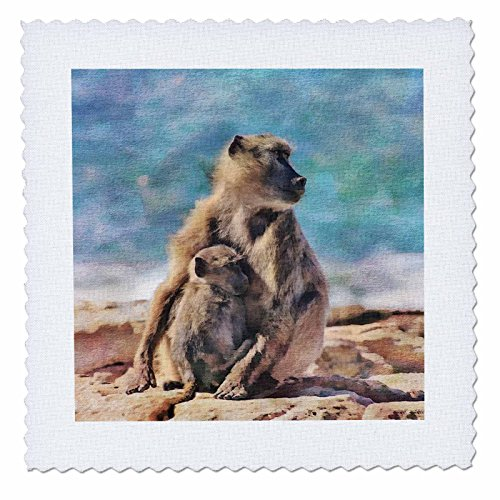 3dRose Andrea Haase Animals Illustration - Baboon Mother With Child Watercolor Illustration - 22x22 inch quilt square (qs_268152_9) by 3dRose