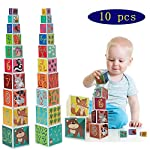 CRUISTORE Cardboard Nesting and Stacking Blocks Set | 10 Pcs of Blocks with Animal、Plant、Numbers、Letters | Development Stacking Games for Kids Toddlers