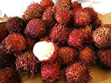 Fresh Rambutan / Hairy Fruit (3 lbs)