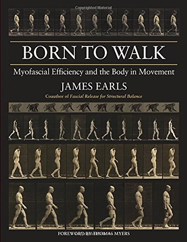 Born to Lead: Myofascial Efficiency and the Body in Movement