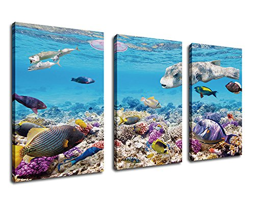 Tropical Fish Paintings - Canvas Wall Art Tropical Ocean Fish Contemporary Pictures Marine Life Canvas Art - Coral Ocean Artwork Painting Canvas Artwork for Home Living Room Bedroom Decoration