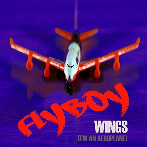 Wings (I'm an Aeroplane)