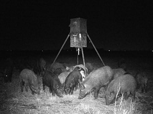 Motion Activated Solar HUNTER AmberGlow Hog Light Harvest Time FEEDER LIGHT