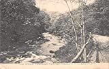 Millbrook New York Turkey Hollow Scenic View Vintage Postcard JE228958