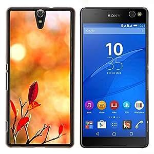 YiPhone /// Prima de resorte delgada de la cubierta del caso de Shell Armor - Naturaleza de Lonely Castle Rock - Sony Xperia C5 Ultra