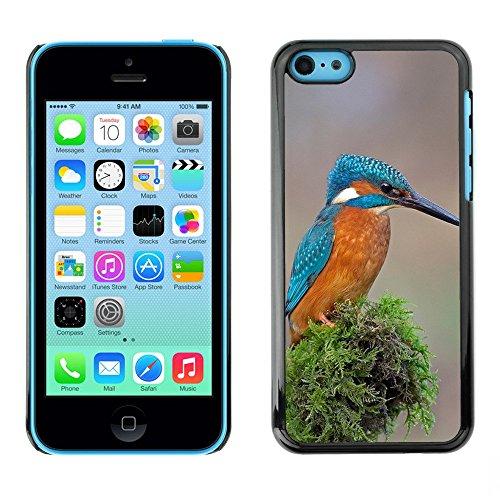 Premio Sottile Slim Cassa Custodia Case Cover Shell // F00001266 oiseau // Apple iPhone 5C