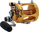 Penn International 30VSX Reel – Gold Review