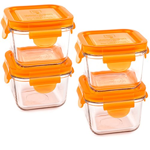 Wean Green Snack Cubes Glass Food Containers, Carrot, Set of 4
