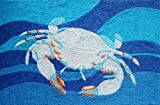 Coastal Blue Crab Swimming in Ocean Waves Accent Area Rug 21 x 33 Inch Jellybean Review