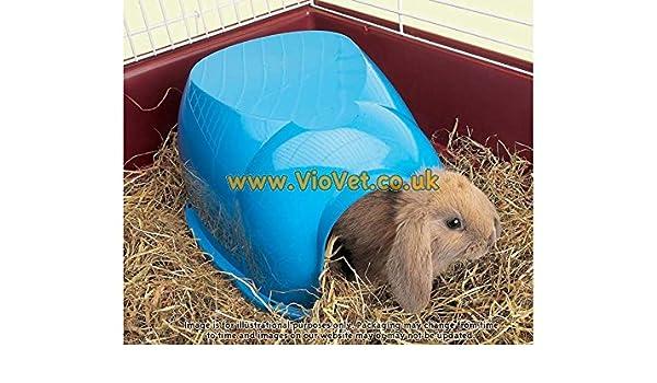 Savic Guinea Pig Conejo enano Igloo - 35 x 27 x 16 cm: Amazon.es: Productos para mascotas