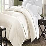 Blue Ridge Home Fashion Microfiber Down Alternative Comforter, Full/Queen, Ivory