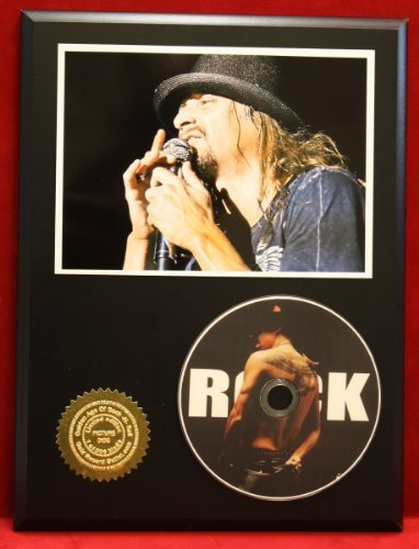 Kid Rock LTD Edition Picture Disc CD Rare Collectible Music Display - Kid Rock Memorabilia