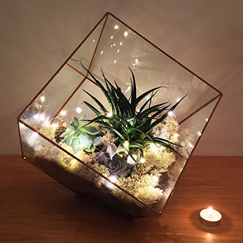 SUPERSIZE EXTRA LARGE TERRARIUM - AZTEC COPPER CUBE - FRAME ONLY. Also available fully assembled with faux succulent plants and LED lights 10'' x 10'' x 10'' (Empty - Frame only) by The Urban Botanist (Image #1)