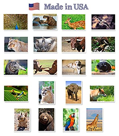 ANIMALS & BIRDS postcard set of 20. Post card variety pack with wild and domestic animal and bird theme postcards. Made in (Bird Post)