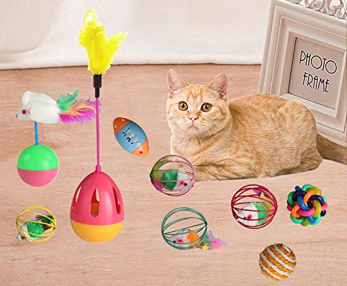 NVTED 6 PCS Cat Toys Assortments, Interactive Kitten Toys Feather Teaser and Exerciser Balls Tumbler for Cat, Kitty, Kitten 5