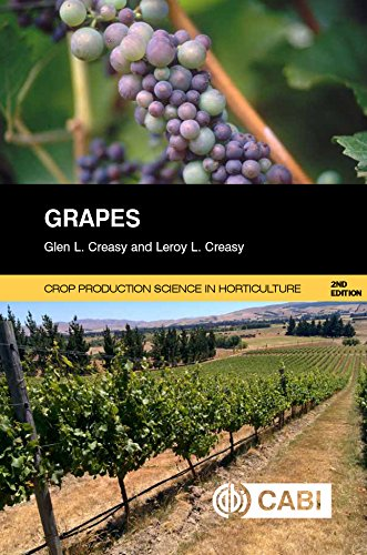 Grapes (Agriculture)