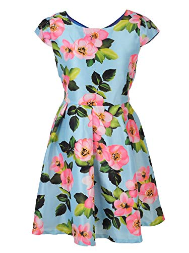 Bonnie Jean Big Girls' Plus Size Dress - Mint, 18.5 ()