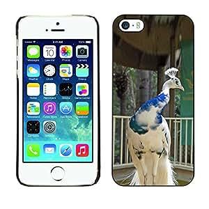 Be Good Phone Accessory // Dura Cáscara cubierta Protectora Caso Carcasa Funda de Protección para Apple Iphone 5 / 5S // peacock bird porcelain white blue crown