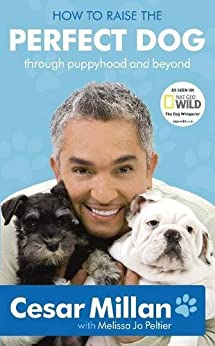 How to Raise the Perfect Dog: Through puppyhood and beyond by [Millan, Cesar]