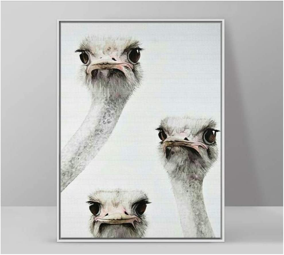 """ZSHMG Canvas Painting Modern Home Decor Animals Three Curious Ostrich Heads Kids Room Wall Art Picture Print Posters-50x60 cm/19.7"""" x 23.6""""Frameless"""